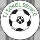 TJ Sokol Benice